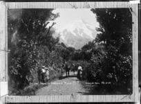 Group on the track leading to Dawson Falls, Mount Taranaki - Photograph taken by David Duncan