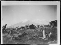 Awatuna East, Mt Taranaki behind - Photograph taken by David Duncan