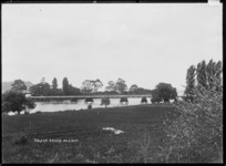Bridge over the Uawa River, Tolaga Bay