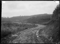 Deviation road near Raglan, 1910 - Photograph taken by Gilmour Brothers