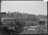 Mangaturuturu Viaduct