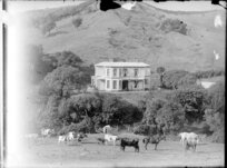 Glen Durie, Major Durie's house, with garden, trees, and paddock, Whanganui district
