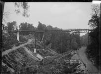 Taonui viaduct