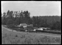 Homestead at Mendip Hills, Hurunui District. View of the back of the house, partially hidden by hedges.