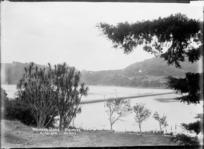 Waiwera River and causeway, Waiwera