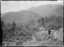 Settlement at Mokihinui