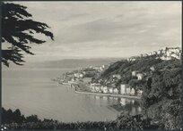 View of Oriental Bay, Wellington