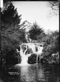 Whakapipi Falls, Tuakau