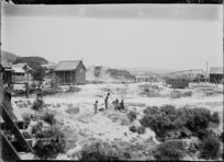General view of Whakarewarewa village