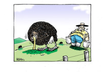 [Fonterra farmer is milking the Kiwi bird]