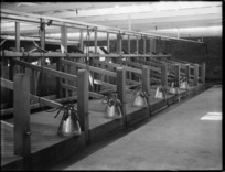 Milking stalls, with Wiggins milking machines