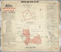 Auckland Land District. No. 1407 [cartographic material] : lands for sale or lease to discharged soldiers, 1,421 acres.