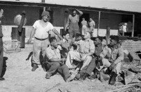 New Zealand soldiers waiting to serve Christmas dinner at the Maori Training Depot, Maadi, Egypt, during World War II - Photograph taken by George Bull