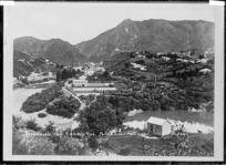 Karangahake township from Kitching's Hill