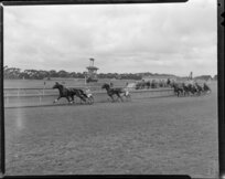 Dominion Trotting Championship, 1st heat, Pacers Championships, Loyal Peter leading Globe Direct, Auckland