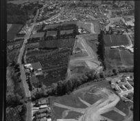 Tui orchard, for New Zealand Housing Corporation land development