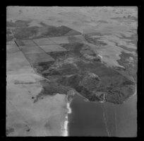 Peat lands, Lake Whangape, Churchill, Waikato