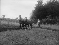 Photograph of a man ploughing