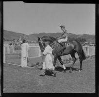 Unidentified horse and jockey, Trentham Racecourse, Upper Hutt