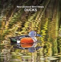 Ducks / Raewyn Adams.