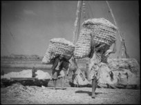 Unloading chaff from native boats, Egypt - Photograph taken by George Kaye