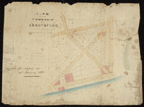Plan of the township of Abbotsford in the province of Hawke's Bay [cartographic material].