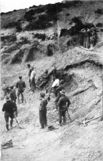 Soldiers digging in, Gallipoli, Turkey