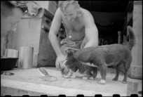 Cook J F Fleming feeds the unit mascot near Florence, Italy, during World War II - Photograph taken by George Kaye