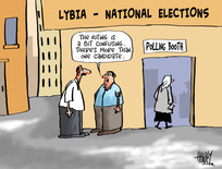 Hawkey, Allan Charles, 1941- :'The voting is a bit confusing. There's more than one candidate'. 10 July 2012