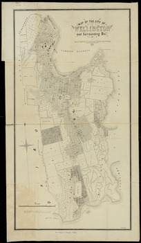 Map of the city of Wellington and surrounding districts [cartographic material] / drawn & published by F.H. Tronson.