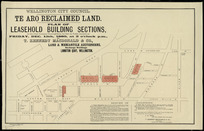 Te Aro reclaimed land [cartographic material] : plan of leasehold building sections.