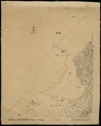 Wellington [cartographic material].