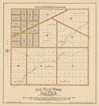 Plan of the township of Dacre [electronic resource] : Blocks I to IV inclusive / surveyed by G.F. Richardson, surveyor, Jany. 1862 ; the remainder by William Hay, assist. surveyor, Augt. 1880 ; drawn by W. Deverell Jan. 1881.