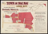 Plan of the town of Nai Nai, Lower Hutt / surveyed by Thomas Ward.