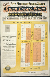 Plan of fifty magnificent building sections, formerly part of the Buick estate, Petone [cartographic material].