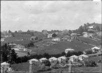 View of Remuera and Mount Hobson