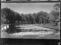 Jubilee Lake in the grounds at the Hastings Racecourse - Photograph taken by H. King?