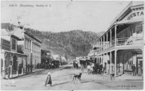 [Postcard]. Broadway, Reefton, N.Z. 5196P. New series. Muir & Moodie series. Issued by Muir & Moodie Dunedin N.Z. from their copyright series of views. [1907]