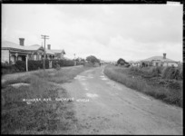 View of Waimana Avenue, Northcote, Auckland