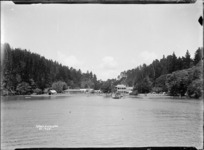 Mansion House Bay, Kawau Island
