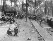 New Zealand soldiers bivouacking in Ploegsteert Wood, Belgium