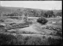 Waingongoro River near Eltham
