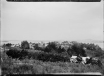 Houses at Northcote, Auckland