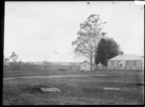Regatta grounds at Ngaruawahia, 1910 - Photograph taken by Robert Stanley Fleming