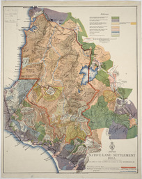 Native Land Settlement Bill [cartographic material] : plan of the land included in the schedule.