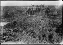 Soldier leading mules laden with munitions through mud, Kansas Farm, France
