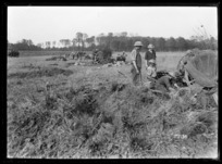 NZ 18 pounder in action, gun position camouflaged, near Le Quesnoy