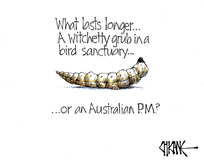 What lasts longer. A witchetty grub in a bird sanctuary or an Australian PM?