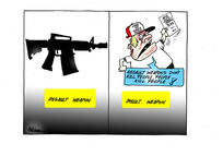 Assault weapon / insult weapon