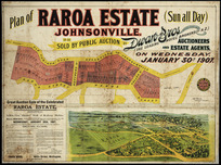 Plan of Raroa estate, Johnsonville [cartographic material] : to be sold ... January 30th, 1907 / [surveyed by] A.P. Mason.